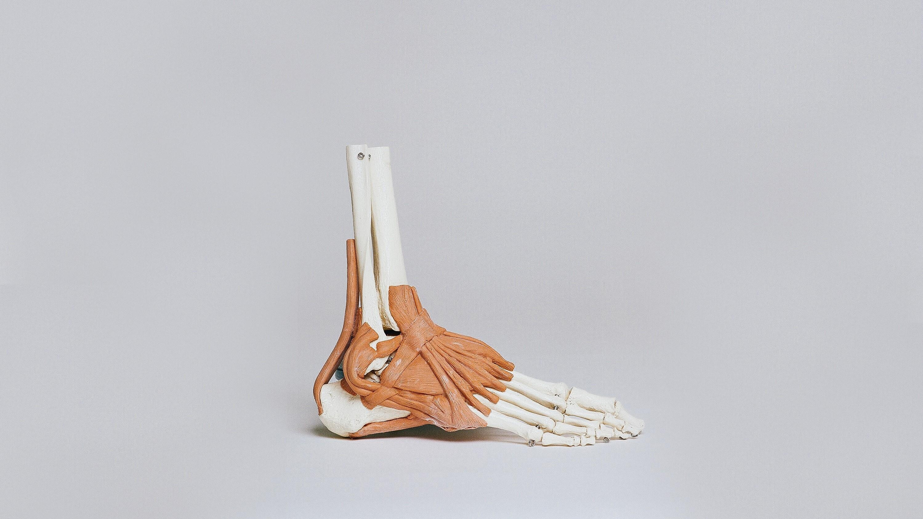 が 痛い 足 薬指 の の 付け根